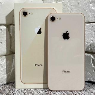 iPhone iPhone 8 64Gb Gold б/у