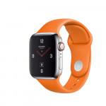 Used Apple Watch